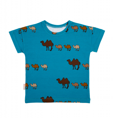 camel on blue