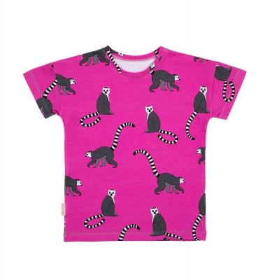 lemur on pink